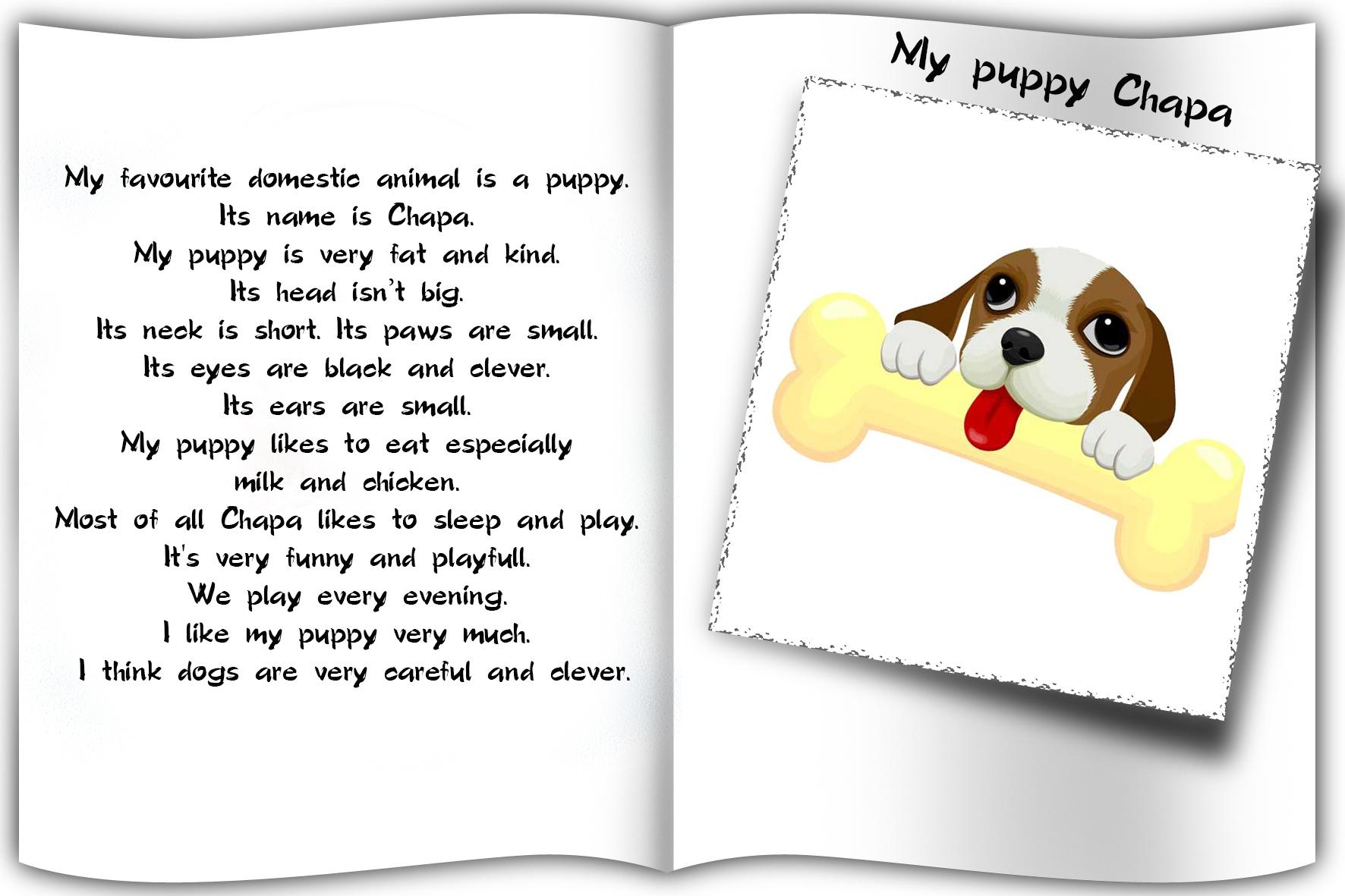 Рассказ о собаке по английский 3 класс
