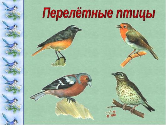 Тематический словарь о перелетных птицах