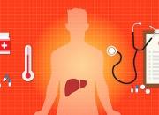 28 июля - Всемирный дата борьбы не без; гепатитом