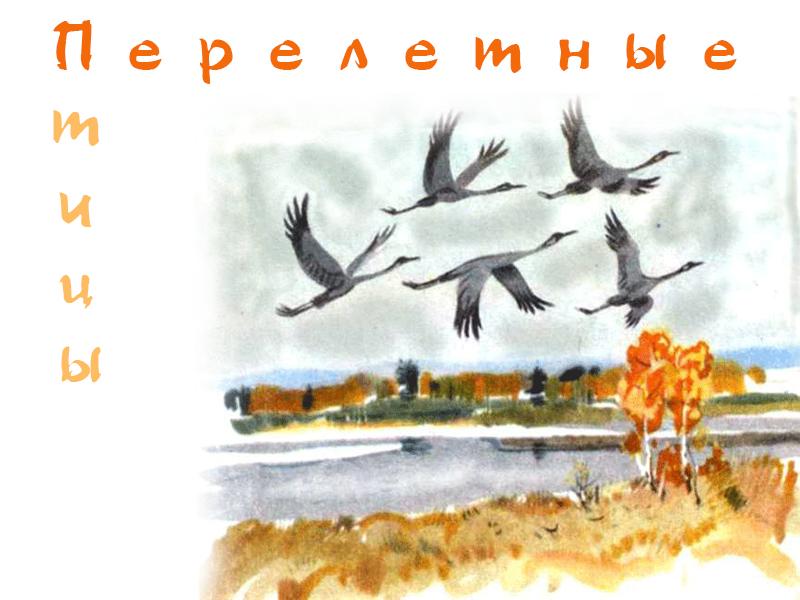 Рисунок улетают птицы на юг